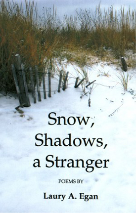 Snow, Shadows, a Stranger Book Cover
